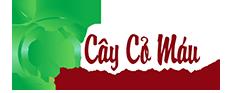 Cây Cỏ Máu Tăng Cân - Cây Cỏ Máu Quảng Bình | caycomauquangbinh.com